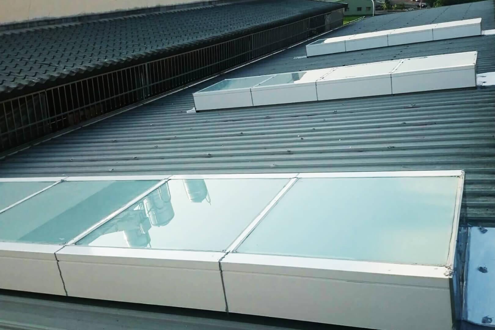 台中 狗養殖場-鐵皮屋頂