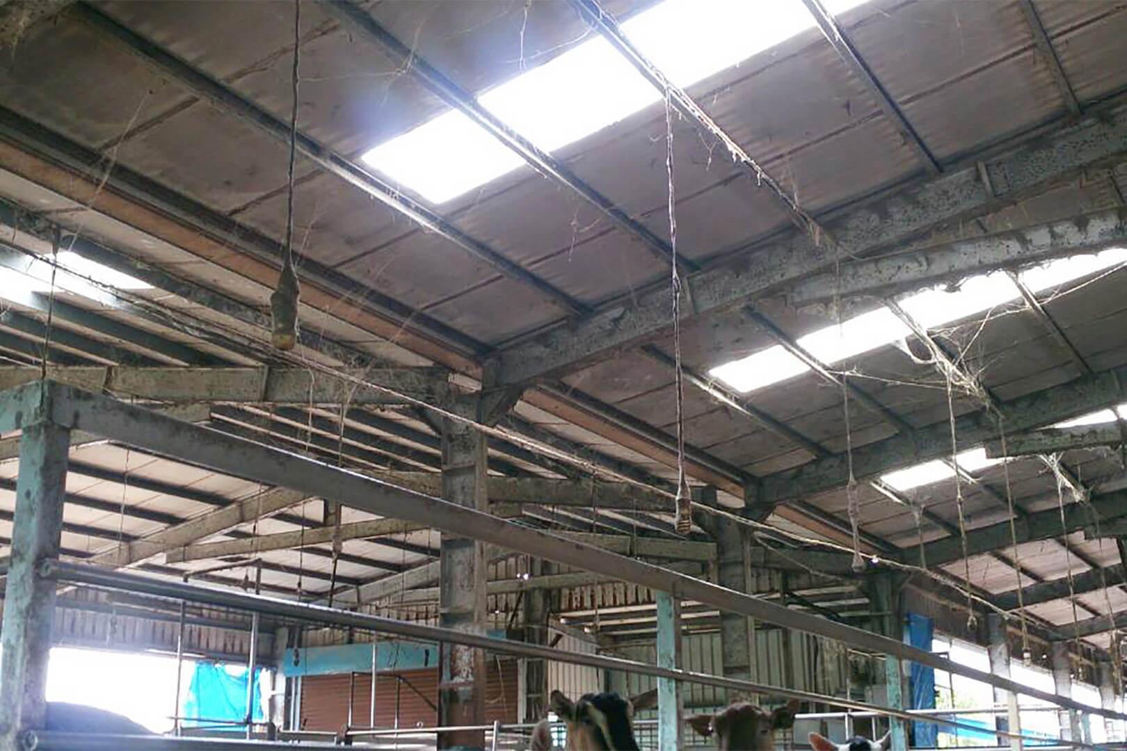 彰化 羊圈-鐵皮屋頂